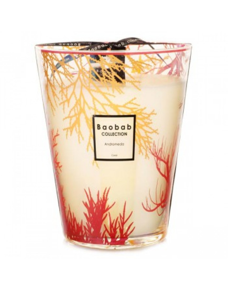 Coral Scented Candle - Andromeda Max24