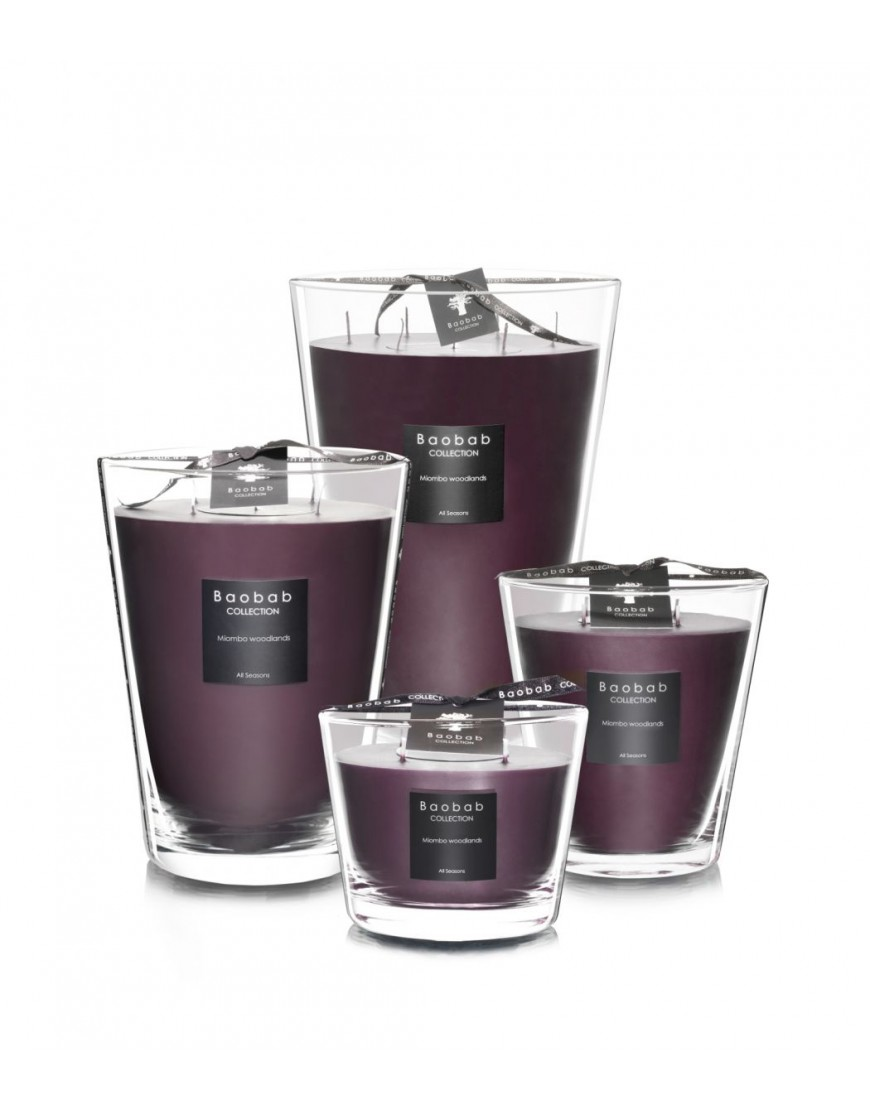 Miombo Woodlands scented candle