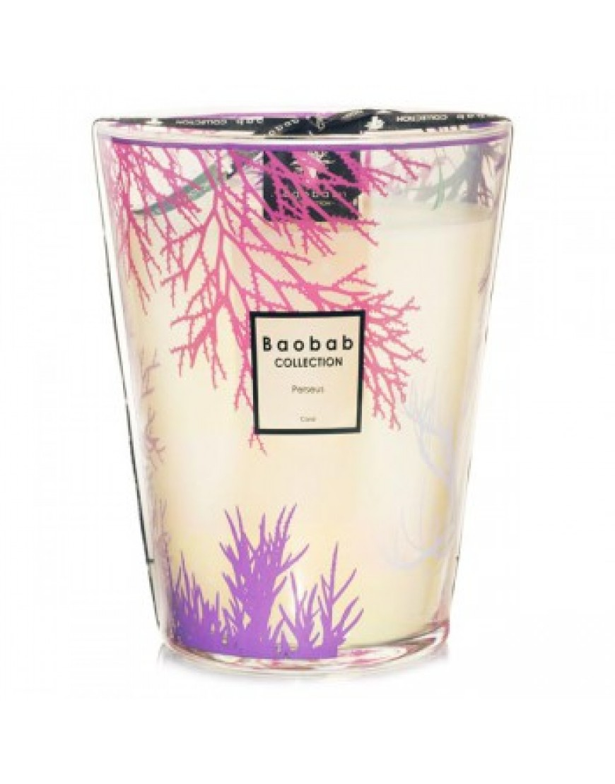 Coral Scented Candle - Perseus Max24